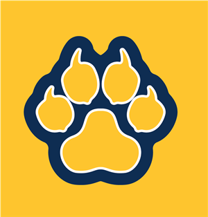 PNG Paw Yellow background